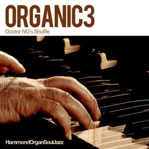Bild för 'Organic3'
