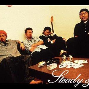 Immagine per 'Steady&Co.'