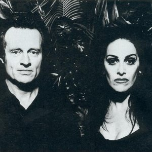 Image pour 'Diamanda Galás with John Paul Jones'