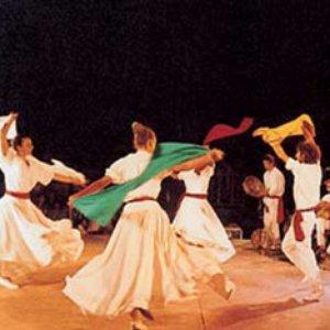 Bild für 'Arakne Mediterranea'