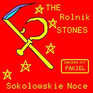Image for 'The Rolnik Stones'