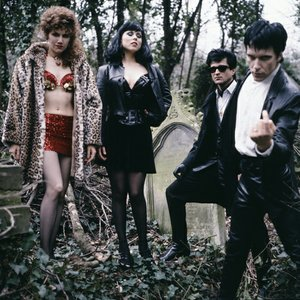 Immagine per 'The Cramps'