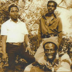 Immagine per 'The Heptones & Lee Perry'