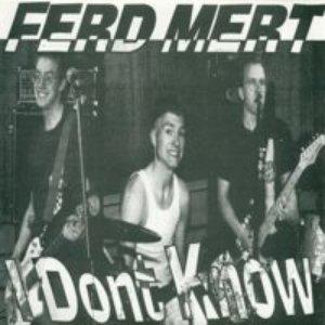 Image for 'Ferd Mert'