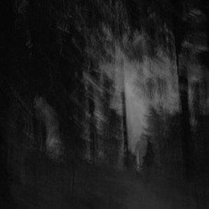 Image for 'Cosmic Transmigration'