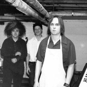 Bild för 'Melvins'