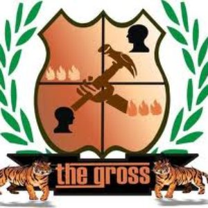 Image for 'THE GROSS'