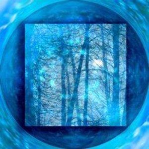 Bild för 'Blue Forest'