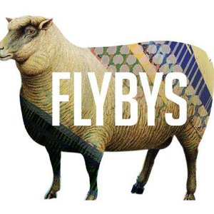 Image for 'Flybys'