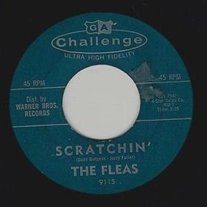 Image for 'The Fleas'
