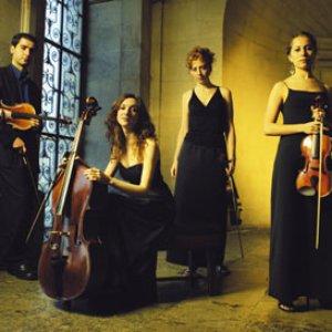 Image pour 'The Elysian Quartet'