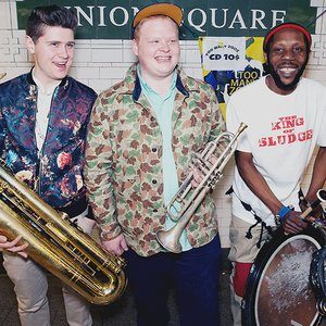 Immagine per 'TOO MANY ZOOZ'