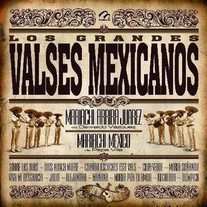 Image pour 'Mariachi Arriba Juarez'