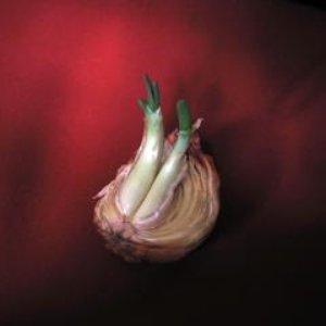 Image for 'Effacer'