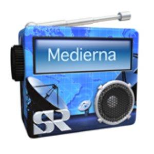 Image for 'SR P1 Medierna'