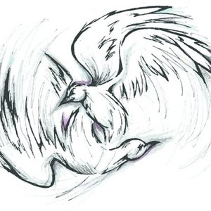 Image for 'The Birds, They Kissed'