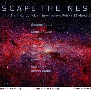 Image pour 'Escape the Nest'