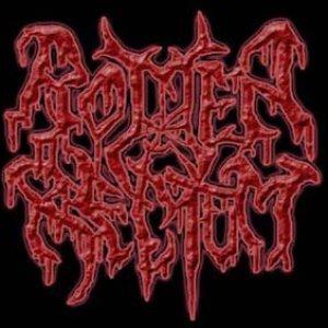 Image for 'Rotten Rectum'