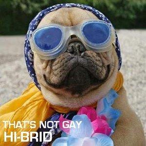 Imagem de 'Hi-brid'