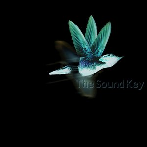 Image for 'The Sound Key'