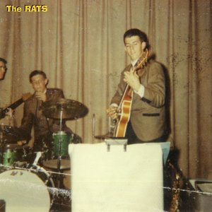 Image for 'The Rats'