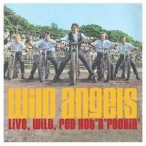 Image for 'The Wild Angels'