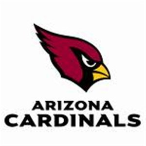 Image for 'arizona cardinals'