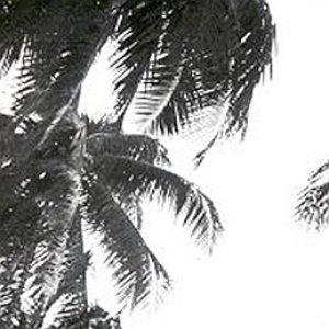Image for 'Melanesian choirs'
