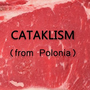 Image for 'CATAKLISM'