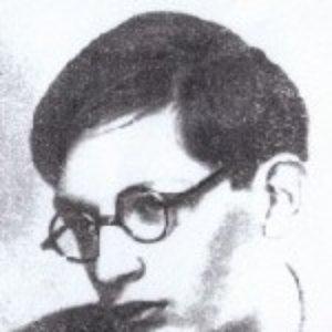 Image for 'Julian Krein'