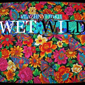 Image for 'wet wild'