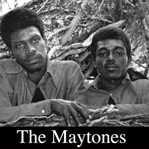 Image for 'Maytones'
