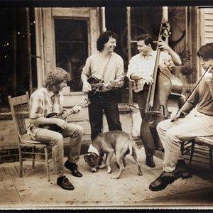 Bild für 'Joshua Bell, Edgar Meyer, Sam Bush, Mike Marshall'