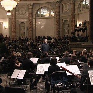 Bild für 'St. Petersburg Orchestra of the State Hermitage Museum Camerata'