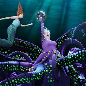 Image for 'Little Mermaid (Dutch Cast Recording)'