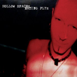 Image for 'HOLLOW SPACEz EATING FLYz'