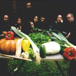 Image for 'The Vegetable Orchestra'