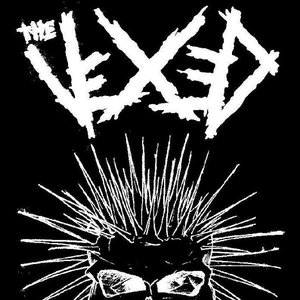 Image for 'the vexed'