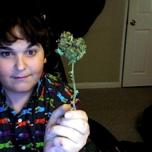 Image for 'Andy Milonakis'