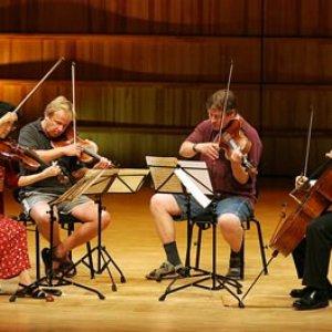 Image for 'Jean Sibelius Quartet'
