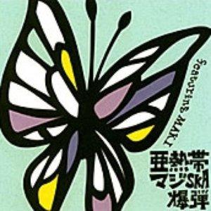 Image for '亜熱帯マジ-SKA爆弾 feat. MAKI'