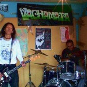 Image for 'Vachamata'