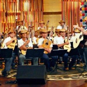 Image for 'Orquestra de Violeiros de Uberlândia'