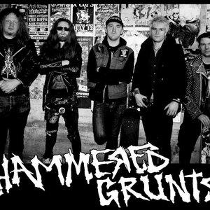 Image for 'Hammered Grunts'