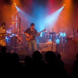 Bild för 'Springdale Quartet'