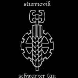Image for 'Sturmovik'