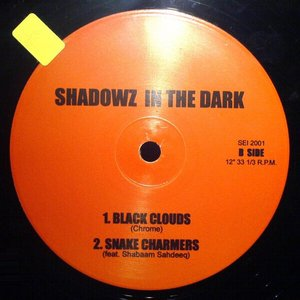 Image for 'Shadowz In The Dark'