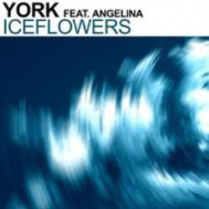 Image for 'York Feat. Angelina'