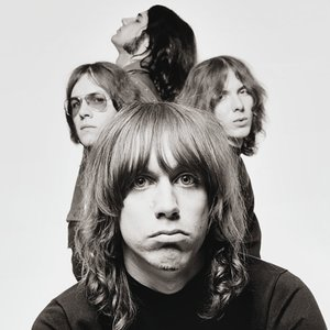 Image pour 'The Stooges'
