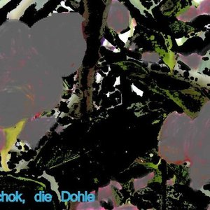 Image for 'Tschok, die Dohle'